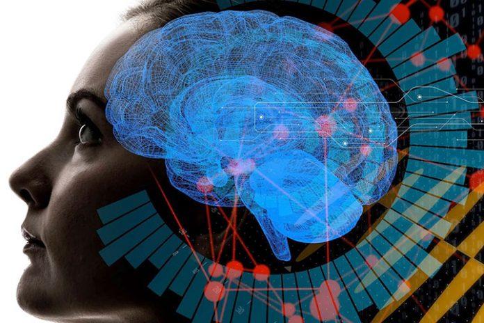señales cerebrales