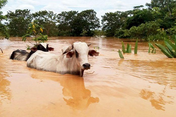inundaciones Beni