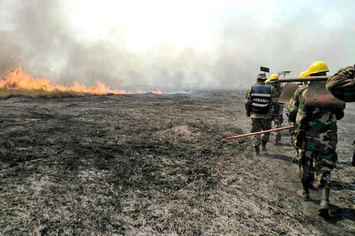 incendios Santa Cruz 2