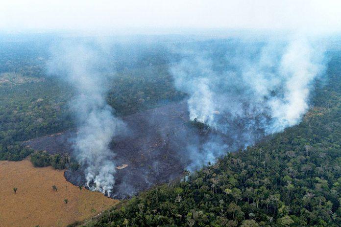 incendios en Rondonia