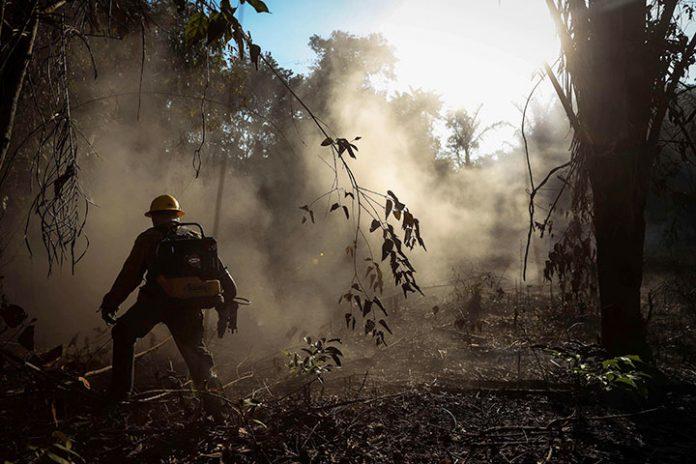 incendios Amazonía