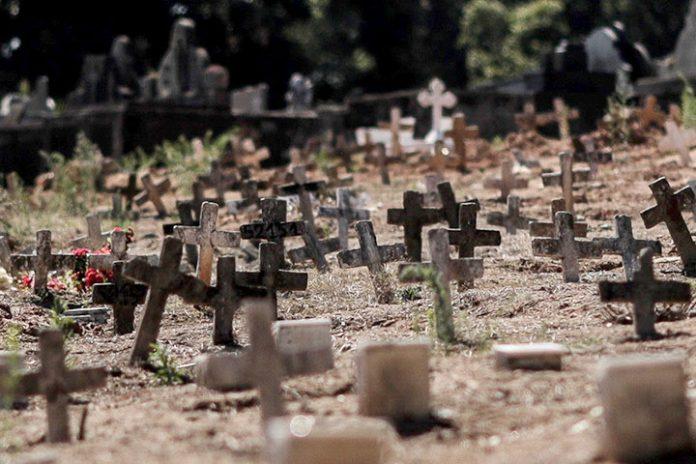 Brasil muertes COVID 19