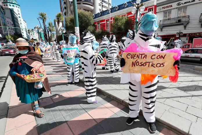 cebras La Paz