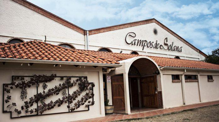 Campos de Solana celebra una vendimia exitosa