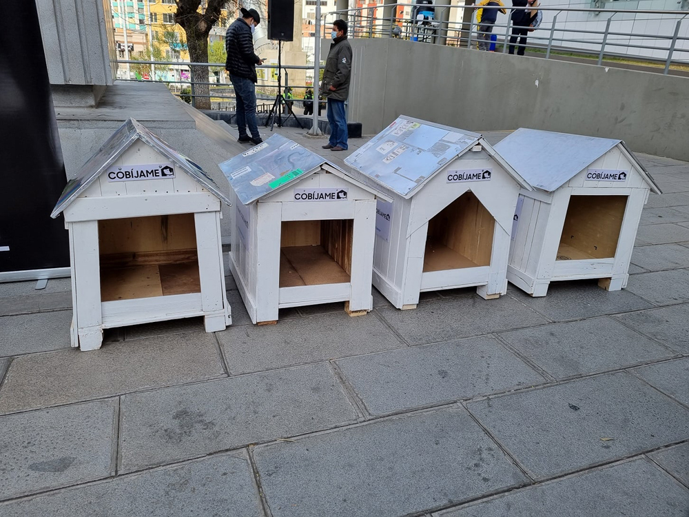Dotar de un techo a los perritos callejeros
