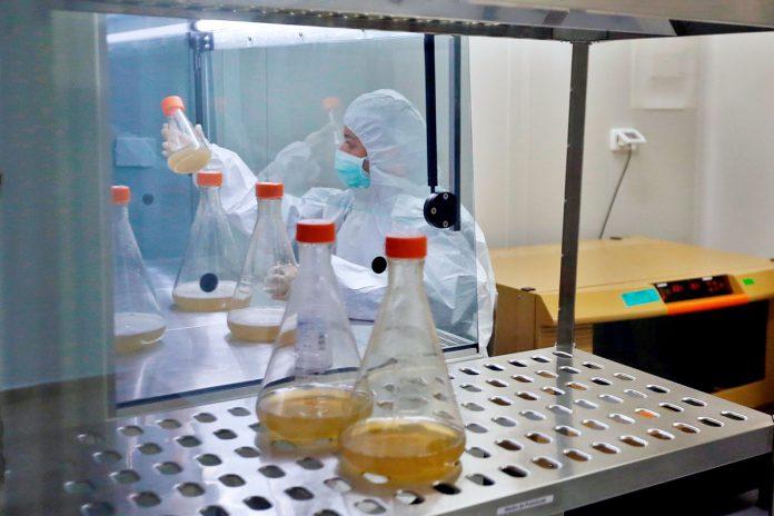sustancia de veneno de serpiente con acción sobre covid-19